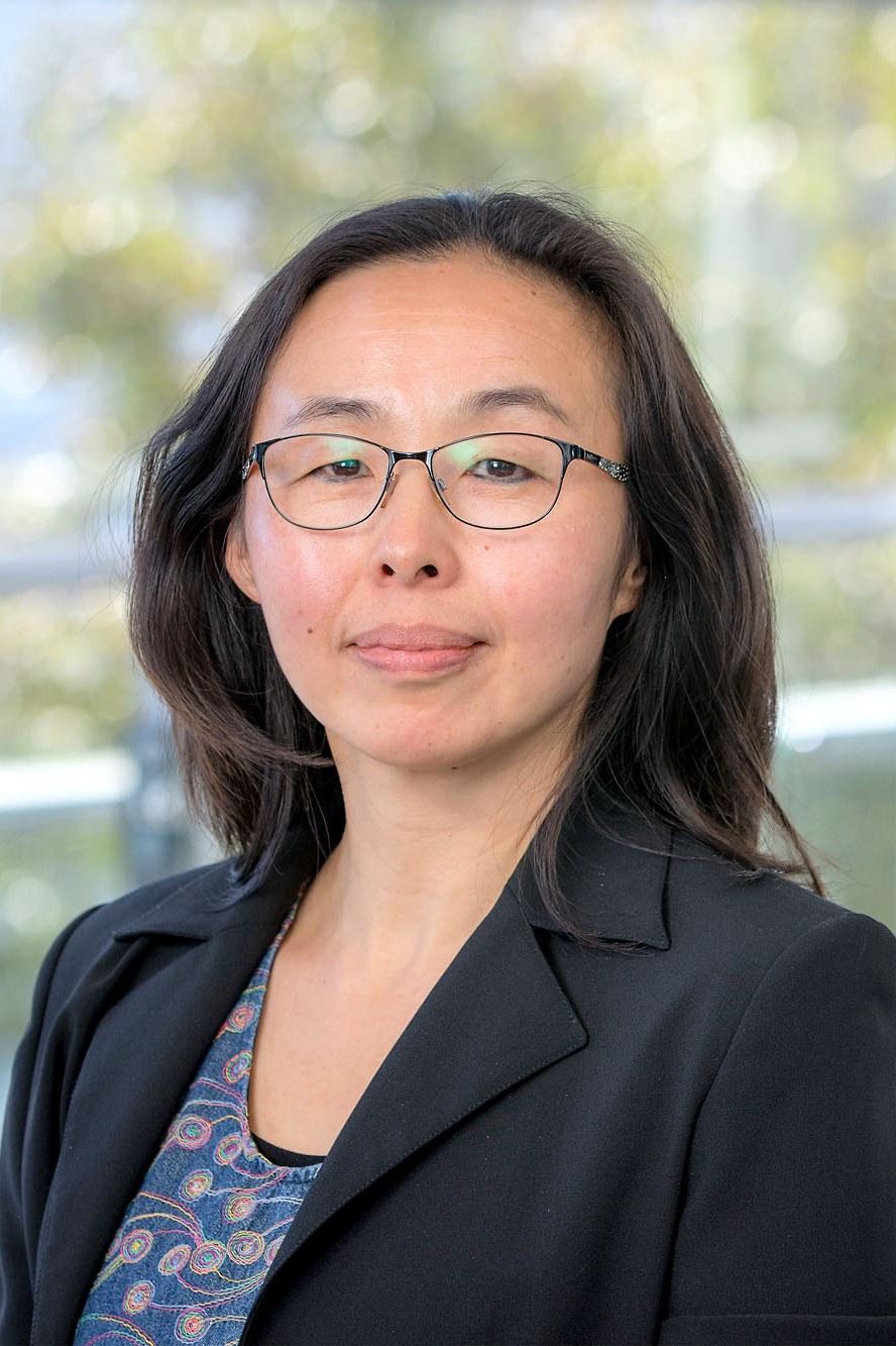 Dr Ling Li