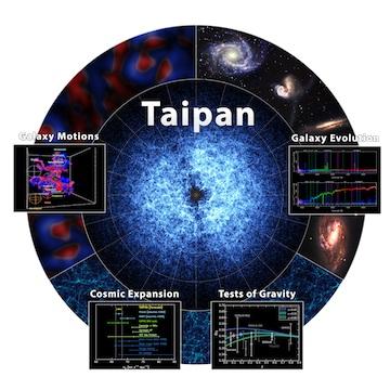 Taipan