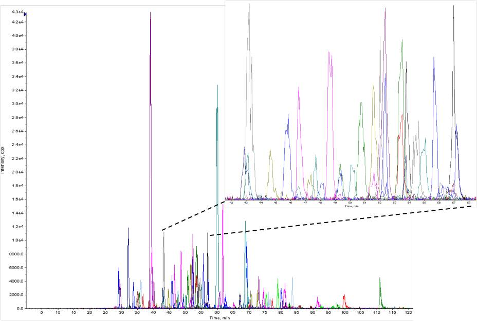 MS/MS spectra of matched peptide