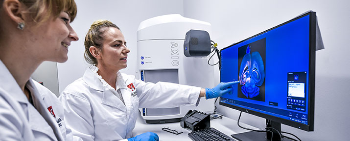 Two researchers looking at a scan of a brain. Image by Morris McLennan