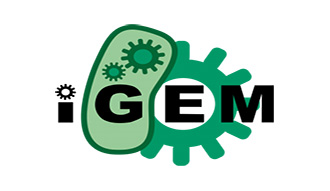 The iGem logo
