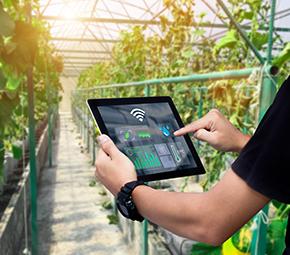 Smart plant technology