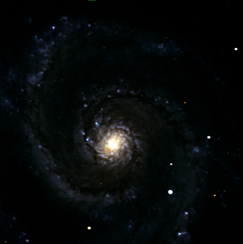 M51 (Trent Critchley)
