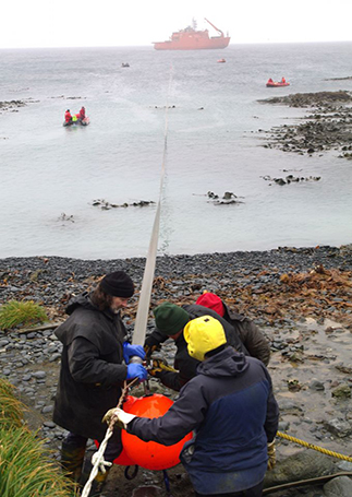 Bringing the refuelling hose ashore on Macquarie Island