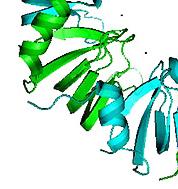 Biomolecular Frontiers Research Centre