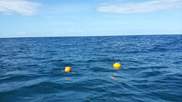 Buoys drifting at ocean surface