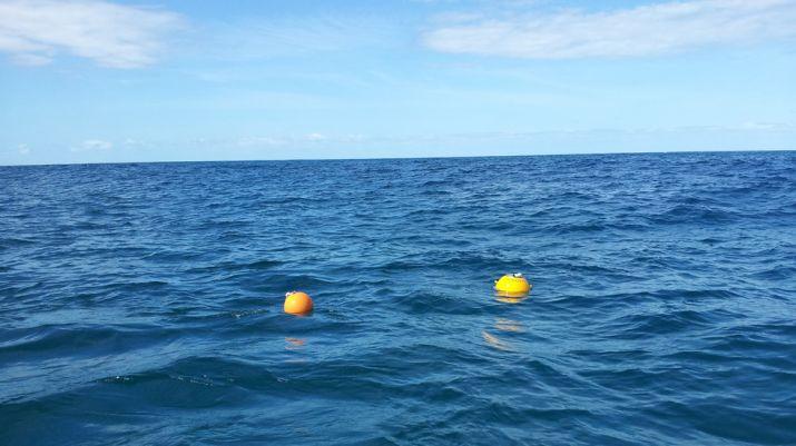 Buoys drifting at ocean surface