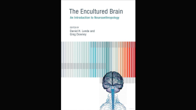 CAVE Book: The Encultured Brain (2013), Ed. Daniel H. Lende and Greg Downey