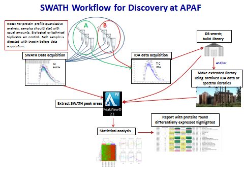 SWATH Workflow for Discovery at APAF