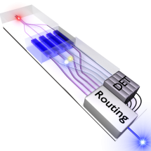 Cartoon of the four-way multiplexed light source showing on-chip photon generation and routing, credit Bernard Gay-Para.