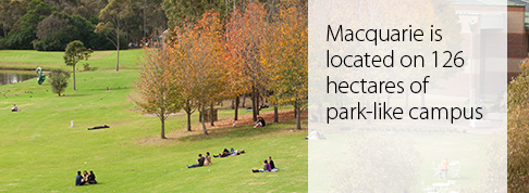 Macquarie is located on 126 hectares of park-life campus